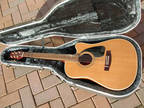 Guitar - Acoustic Samick SW220HSC - Hiscox Hard Case